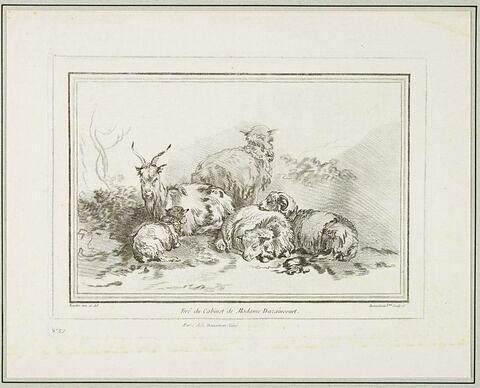 Quatre moutons et une chèvre