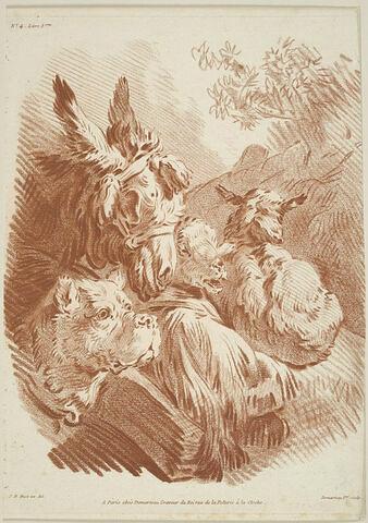 Ane, chien et moutons