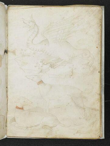 Dragon et groupe de deux chiens