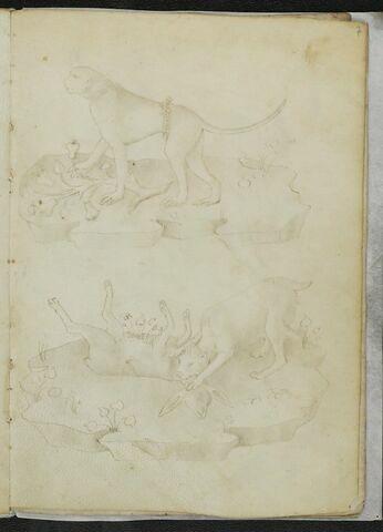 Un singe, et un chien (?) égorgeant un lapin
