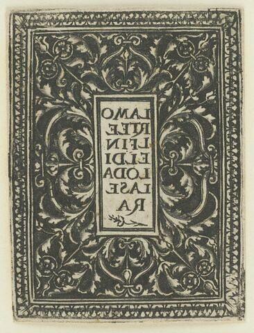 Arabesques symétriques en blanc sur fond noir