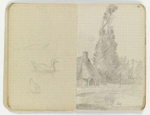 Canards sur l'eau, sur trois registres