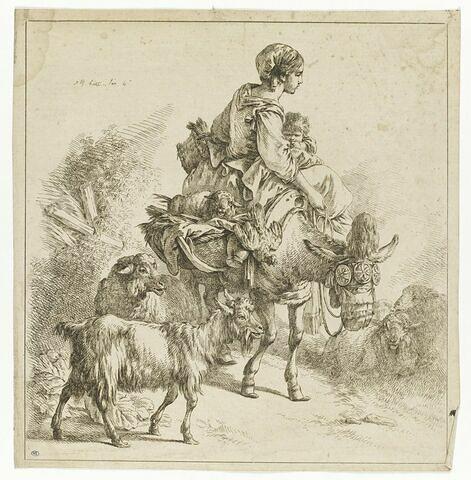Paysanne avec un enfant sur un mulet, parmi les moutons