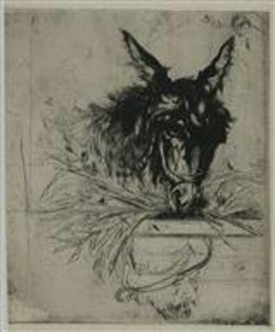 Fragment : âne en train de brouter à une mangeoire