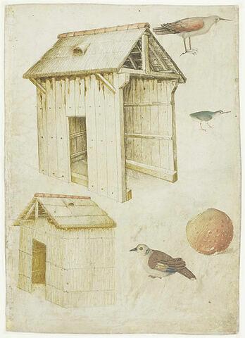 Deux études de cabane, trois oiseaux et une pomme