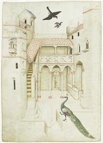 Cour intérieure d'un palais, paon et faucon attaquant un canard