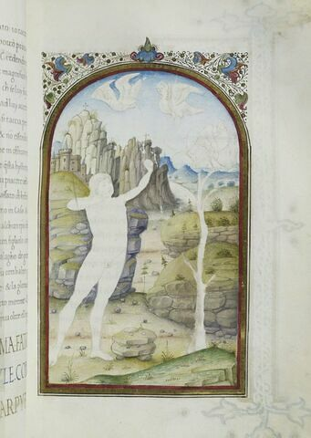 Hercule perce de ses flèches les oiseaux du lac Stymphale