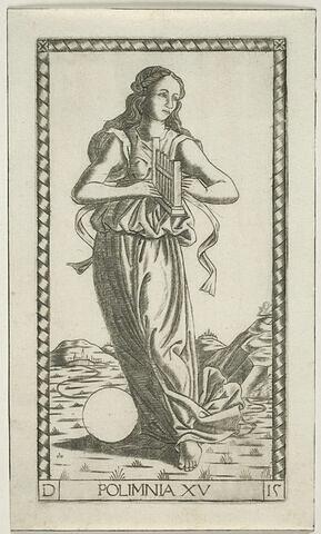 POLIMNIA XV