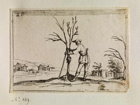 Le jardinier émondant un arbuste