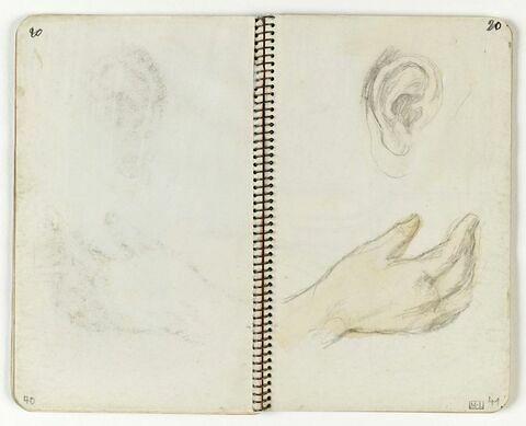 Etude de main et d'oreille