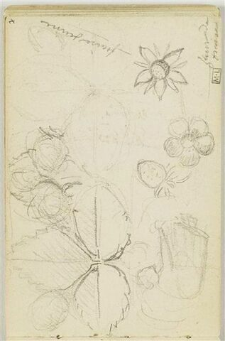 En haut, à gauche, croquis de paysanne, courbée en avant, de profil à droite ; ornements végétaux