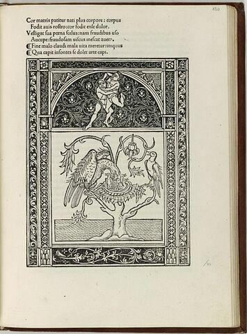Fable du rossignol et du faucon