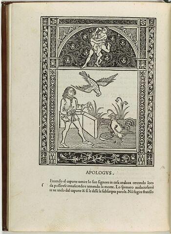 Fable du faucon et du coq