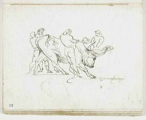 Cinq hommes maîtrisant un taureau et première mise en place du même taureau ; croquis d'une tête de buffle, de profil vers la gauche