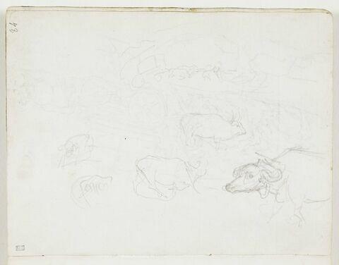 Études de bovins ; esquisse d'un char tiré par des bœufs dans un paysage de collines