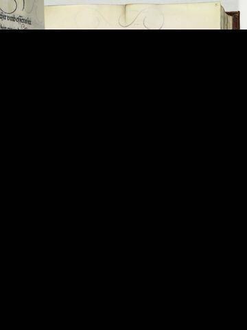 37. Ein grosse geferlichait dem Tewerdanck un seinen gesellen im Stamacher tall zugestanden wie das dann clerlich geschriben steet.