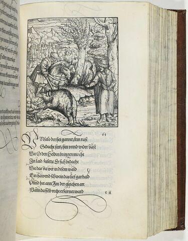 61. Ein treffenliche geferlichait dem khün Ritter Tewrdanck mit einem Swein begegnet in Brabandt.