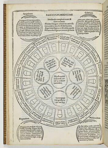 Similitudo complexiorum & elementorum. Tractatus primus. De urinarum iudiciis