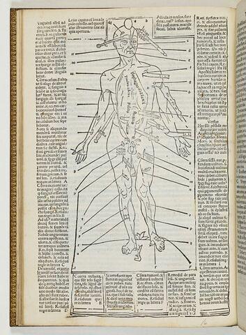 Tractatus sextus. De chyrugia